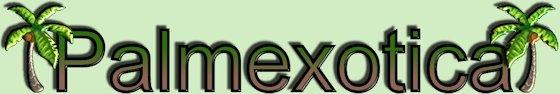 Palmexotica
