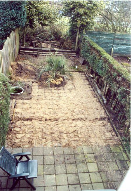 Palmexotica mijn tuin 2006 - Hoe om te beseffen een tuin ...
