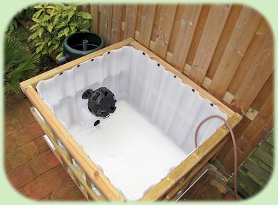 Palmexotica mijn tuin 2011 for Terrasvijver maken