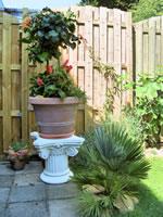 HDR foto van de griekse pilaar met exotische planten