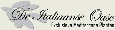 De Italiaanse Oase