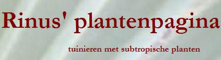 Rinus vertelt u het één en ander over zijn passie tuinieren, het tuinieren met subtropische planten.