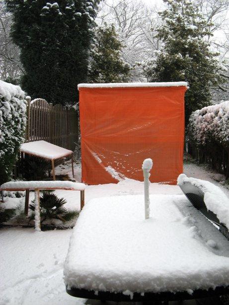 Een dik pak sneeuw over de goed beschermde exoten tuin