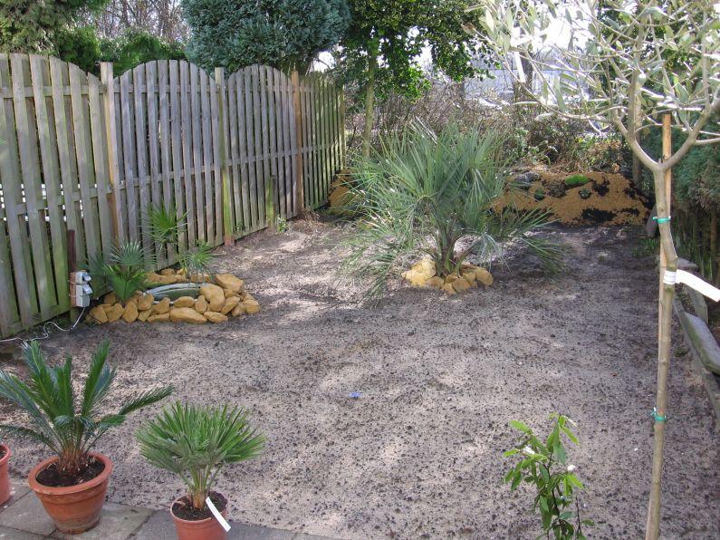 De vijver en bult zijn nu bijgewerkt, tevens zijn er nieuwe planten aangekocht