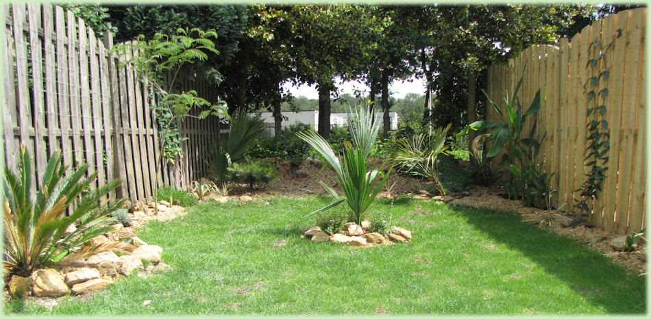 De tuin staat er goed bij in Juni