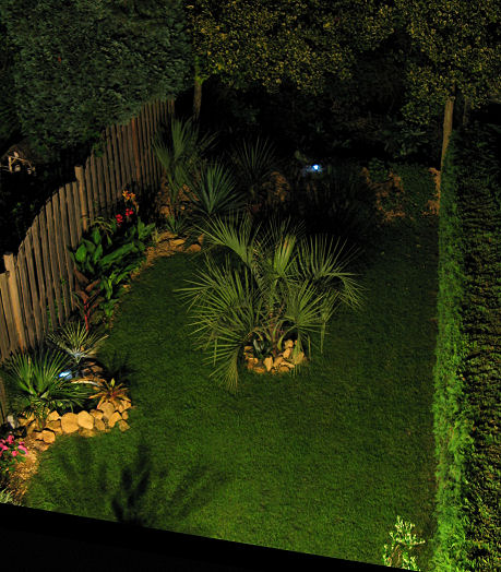 Een mooie exotische nachtfoto