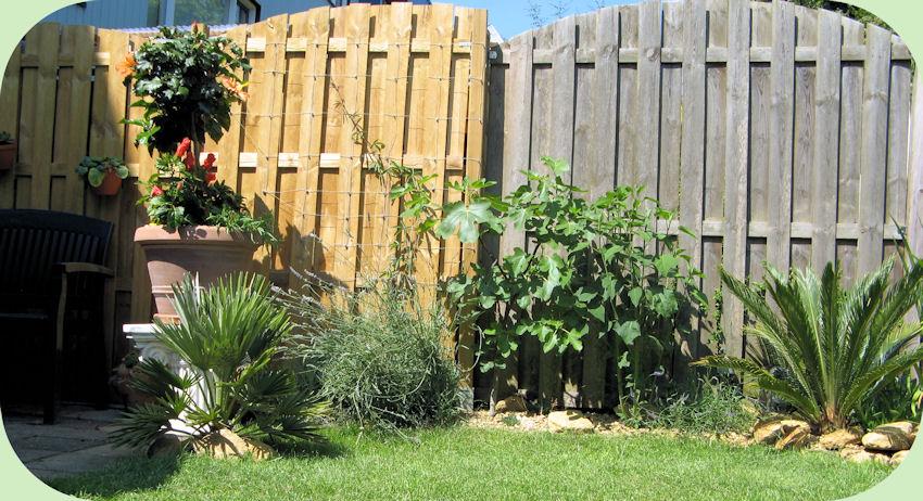 Het nieuwe stukje tuin staat er mooi bij