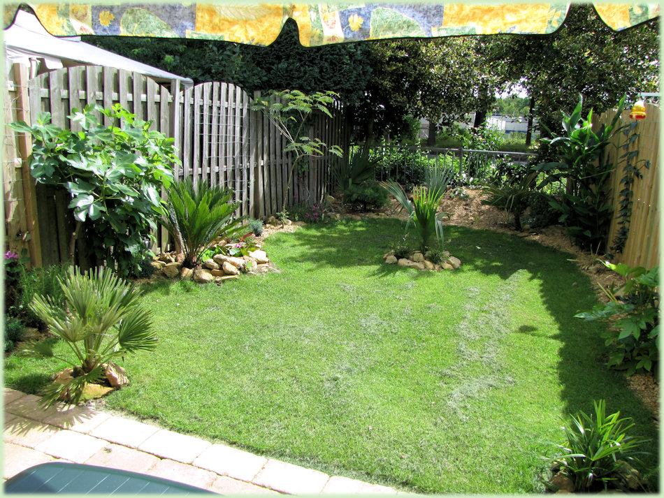 Een zonnige kijk op de tuin in Juli