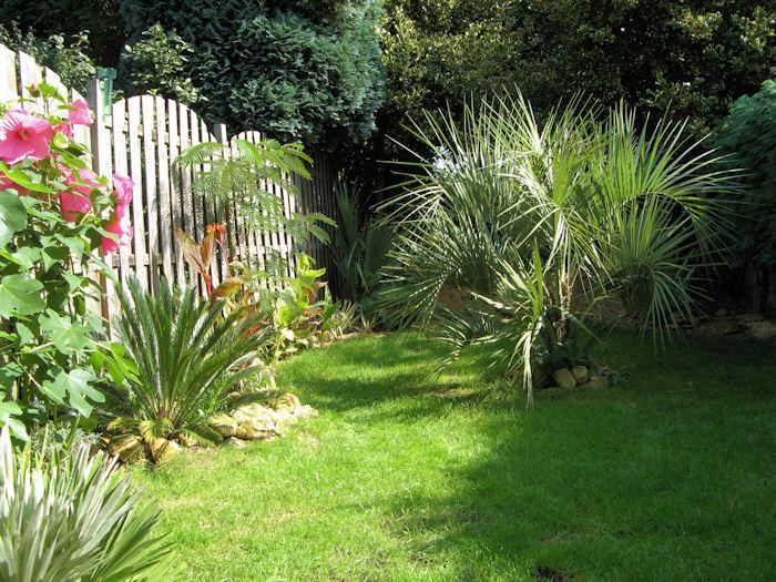De tuin staat er prachtig bij
