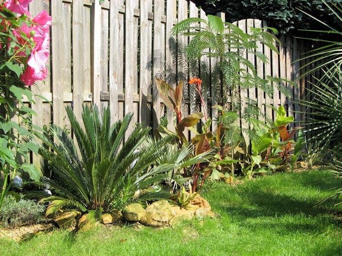 Een mooi stukje exotische tuin