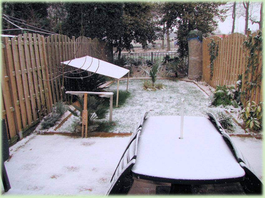 Een sneeuwige wintertuin