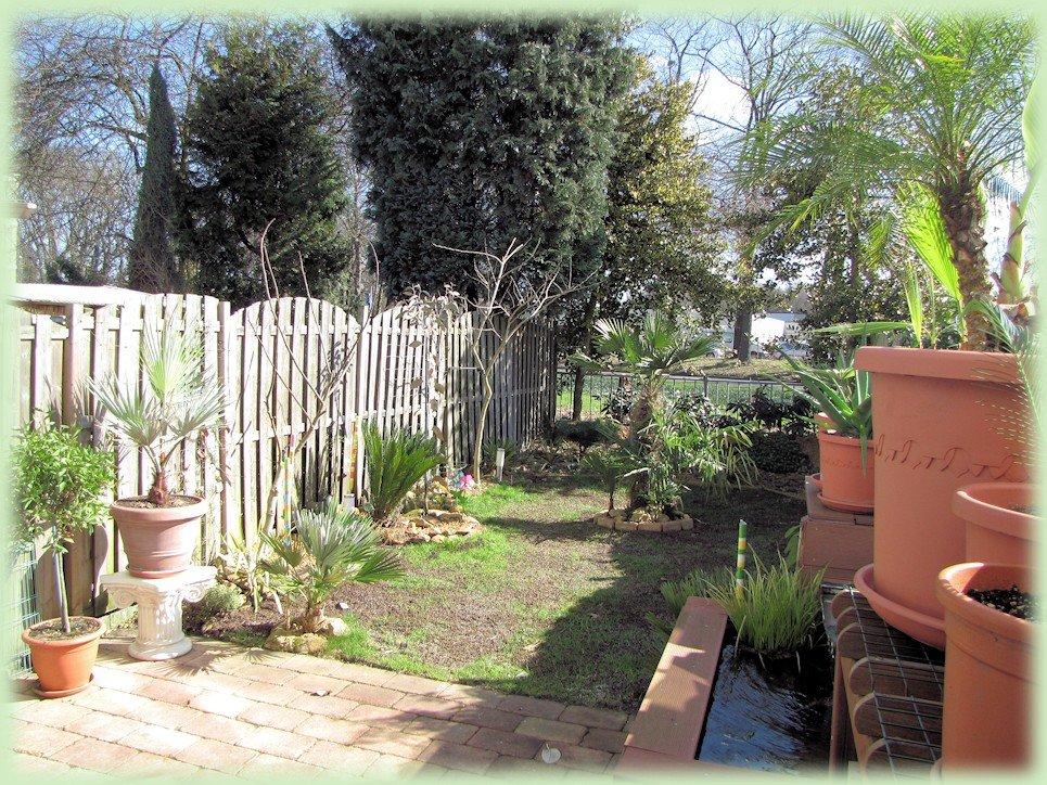 Mijn tuin in maart 2012