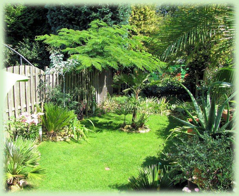 Mijn tuin in augustus 2012