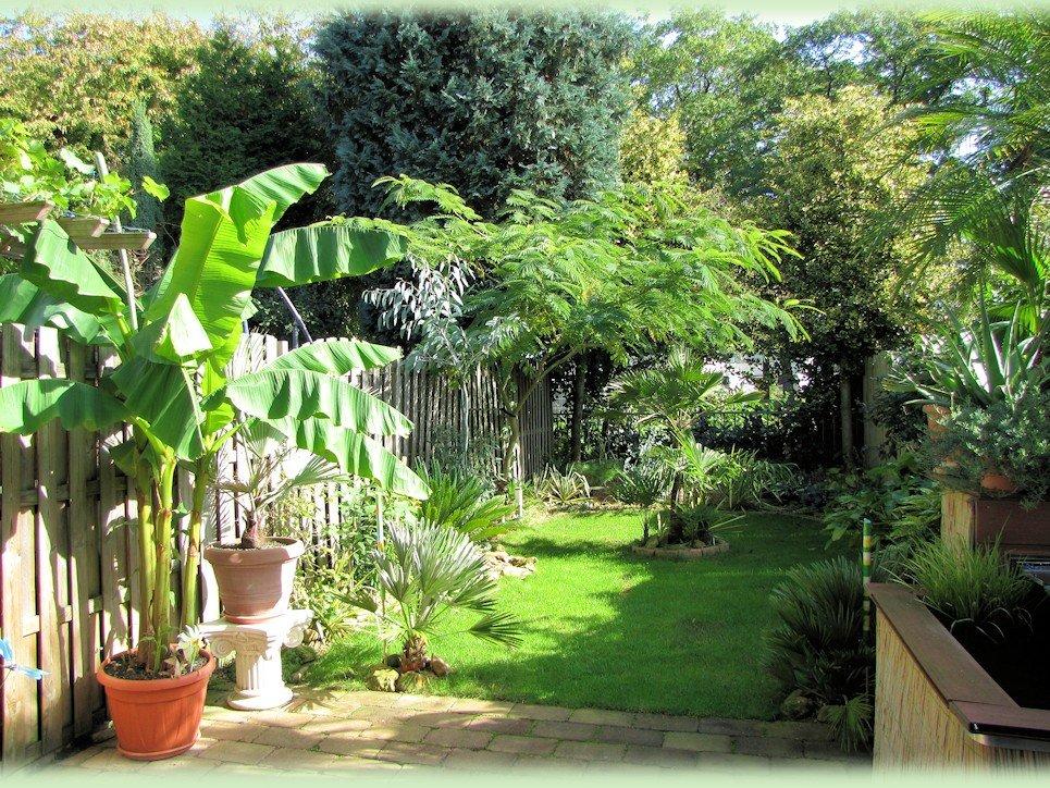 Mijn tuin september 2012