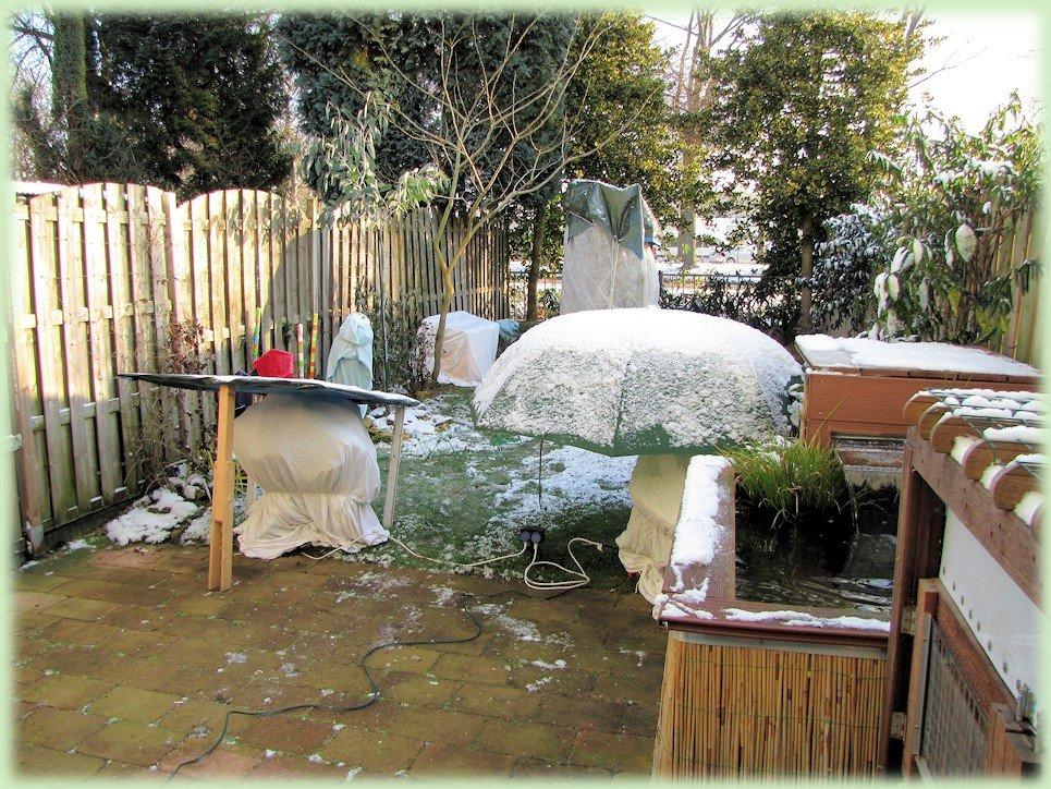 Mijn tuin in december 2012