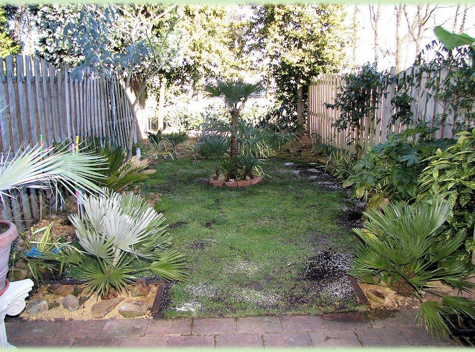 De tuin in april 2013