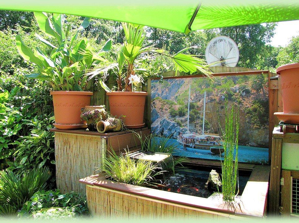 De exotische vijver in juli 2013