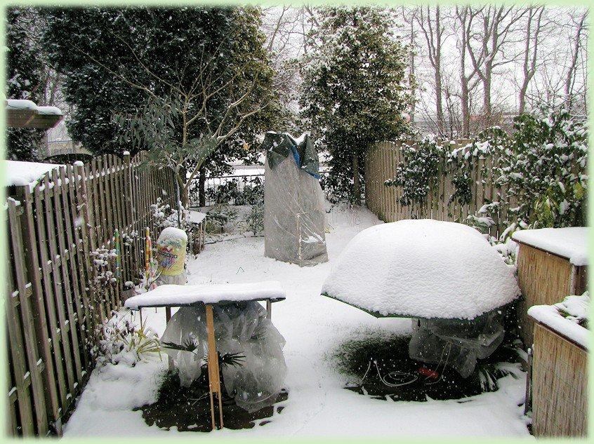 Mijn tuin in februari 2012