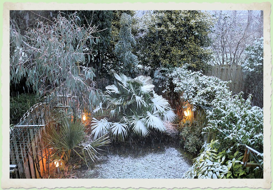 Sneeuwtuin in februari 2016