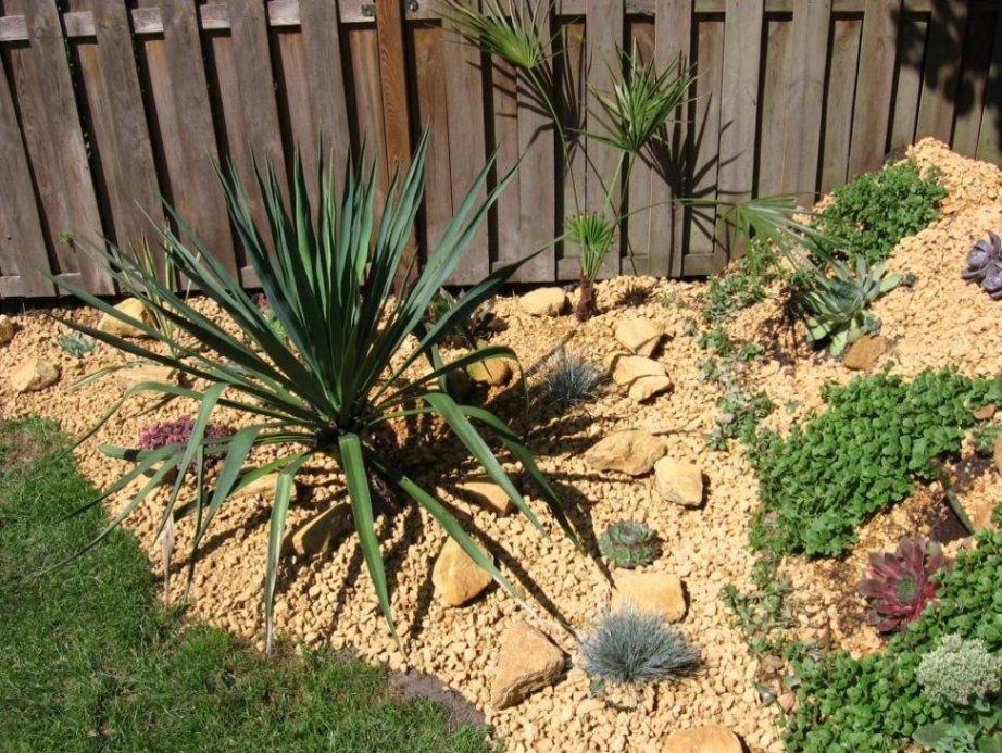 Een exotentuin houdt van de zomer