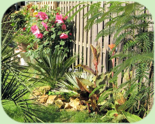 De tuin in de vroege herfst, met vollop bloeiende planten.